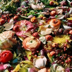 Jocelyn Lee, Dark Matter #3, Wedding Flowers, digital archival print on Canson Platine paper (6_50), 16_x20_, 2015, $950, Full Donation, @jocelynleephotography