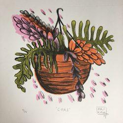 LYNNE.CARE - Arikah Conant (1)